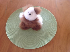Photo of Alpaca Teddy Bear 5