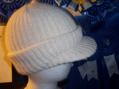Photo of NEAFP 100% Alpaca Radar Hat