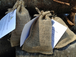 Photo of Single Pouch of Paca Tea