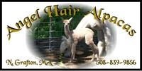 ANGEL HAIR ALPACAS (MA) - Logo