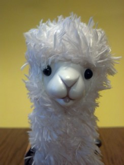 Photo of Windup Alpaca