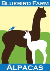 Bluebird Farm Alpacas - Logo