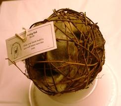Photo of Bird ball