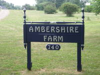 Ambershire Farm - Logo