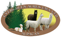 Evergreen Acres Alpacas - Logo