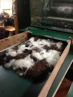 Photo of Evergreen Fleece Processing, LLC