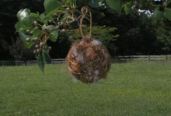 Photo of Alpaca Nesting Ball