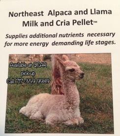 Photo of Alpaca Feed - M&C