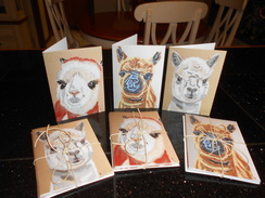 Photo of Package of 5 Notecards