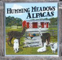 Humming Meadows Alpacas - Logo