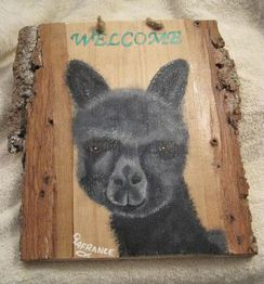 Photo of Alpaca Welcome Sign - Black Cria