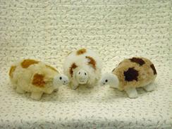 Photo of Alpaca Turtles-Includes Shpg