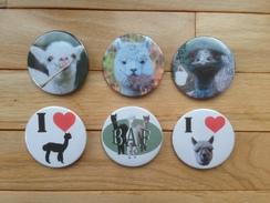 Photo of Alpaca Buttons