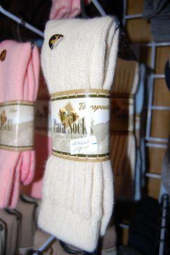 Photo of Paca Socks