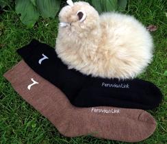Photo of Sport  Casual Socks