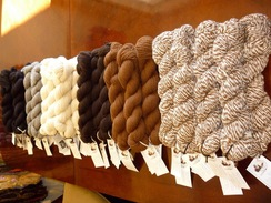 Photo of Natural Colors of Yarn