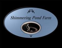 Shimmering Pond Farm Alpacas - Logo