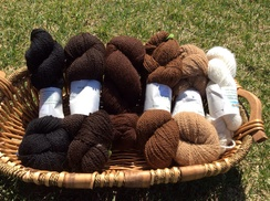 Photo of 100% alpaca yarn