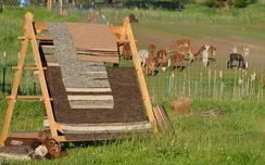 Photo of Uniquely Beautiful Alpaca Rugs