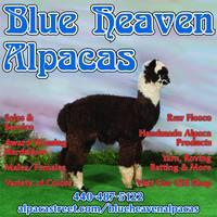 BLUE HEAVEN ALPACAS - Logo