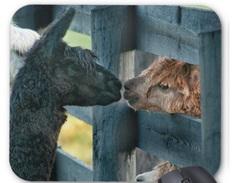 Photo of Kissing Alpaca Mouse Pad