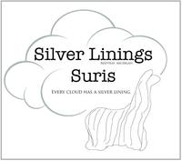 Silver Lining Suris - Logo