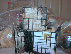 Photo of Bird Nesting Refill includes Shipping