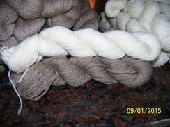 Photo of Cashmere Yarn - fingering