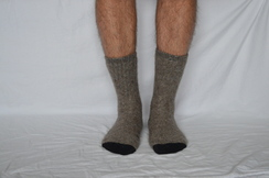 Photo of SOCK  -- ALPACA SOCK