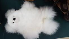 Photo of Large Alpaca Bear