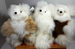 Photo of Alpaca Huacaya Bears 10""