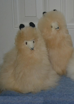 Photo of Alpaca Fur-Peruvian Sitting Alpaca