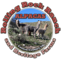 Rolling Rock Ranch Alpacas - Logo