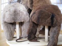 Photo of Fur Flap Hat