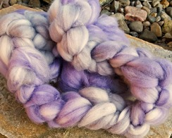 Photo of Majestic Merino plum