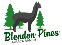 Blendon Pines Alpaca Ranch - Logo
