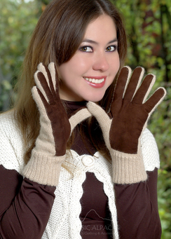 Photo of Alpaca Double Layer Driving Gloves