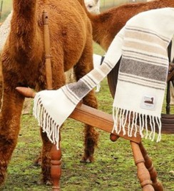 Photo of Deschutes Alpaca Scarf