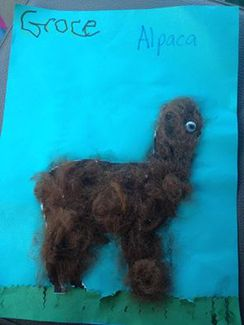 A craft studends have made using alpaca fleece.  Check out our album for more crafts pictures.