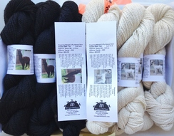 Some of our Alpaca Yarn