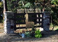 Bluff Breeze Farm - Logo