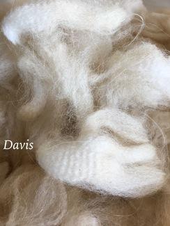 Photo of Raw Fiber ~ White Alpaca Fiber