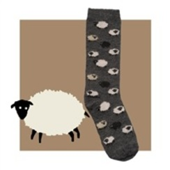 Photo of Alpaca Sheep Socks