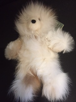 Photo of Teddy Bears (Various Colors/Styles)