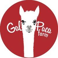 GalPaca Farm - Logo
