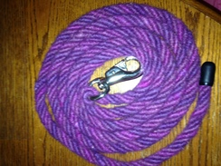 Photo of 8' Purple Horse Lead