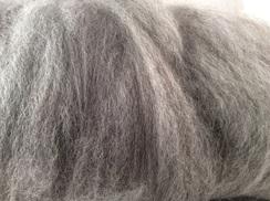Photo of Beautiful gray huacaya alpaca