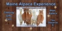 Maine Alpaca Experience - Logo