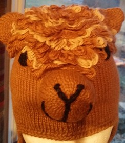Photo of Kid's Alpaca Hat