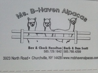 Ms. B-Haven Alpacas - Logo